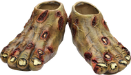 Zombie Rotted Feet Image