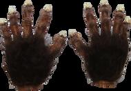 Wolf Hands Deluxe Image