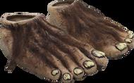 Big Feet Image