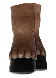 Horse Hooves Brown Image