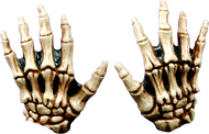 Junior Skeleton Hands Bone-colored Image