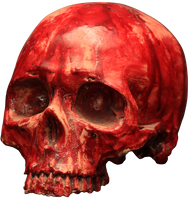 Bloody Resin Skull Image