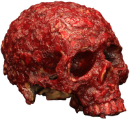 Blood Scab Resin Skull Image