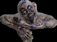 Zombie Ground Image