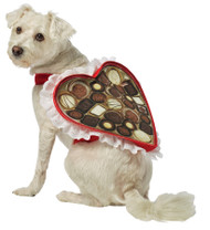 CHOCOLATE BOX DOG COSTUME MED