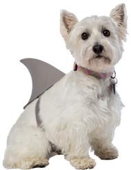 SHARK FIN DOG COSTUME XL/XXL