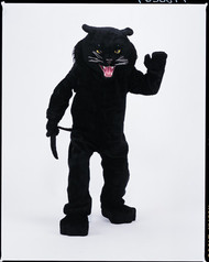 PANTHER BLACK MASCOT COMPLETE Front View