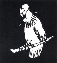STENCIL VULTURE STAINLESS