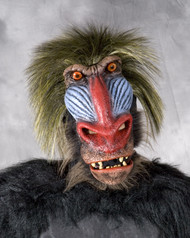 Baboon mask with latex facial piece with hair back. Full over the head mask. Comfortable to wear.