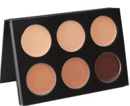Mehron 6 color skin tone mask cover makeup palette