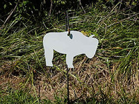 "Buffalo Bison Hanger Gong Target - 3/8"" Thick AR500 1 piece(FREE SHIPPING!)"