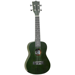 Tanglewood TWT 3 FG - Forest Green