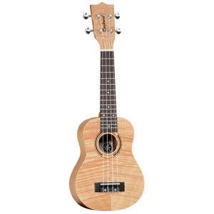 Tanglewood TWT5
