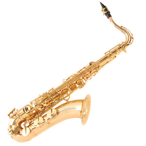 <div> <div>Accuracy and fluidity are the hallmarks of the Odyssey Premiere saxophone range.</div> <div>With a glorious purity of tone and ability to create an 'edge', this range is suitable for a&nbsp;broad selection of genres.</div> <div>&nbsp;</div> <div>With professional features such as Italian pads and springs and high quality body and key work,&nbsp;and complemented by high class cosmetics including a clear lacquer finish and decorative&nbsp;engravings, Premiere saxophones are a natural lead in to accomplishment.<br /><br /></div> <strong>Specification</strong></div> <div>&bull; Mouthpiece and cap</div> <div>&bull; BG &ndash; LDT1 Duo Metal Ligature</div> <div>&bull; Quality Italian pads and springs</div> <div>&bull; Brass body</div> <div>&bull; Lacquer finish</div> <div>&bull; Supplied with Vandoren reed</div> <div>&bull; Zero-gravity &lsquo;backpack&rsquo; hard foam case Canvas covered, plush lined with shoulder straps</div> <div>&bull; Accessories: Gloves, cleaning cloth, cork grease, neck sling</div>