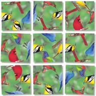 North American Birds Scramble Squares
