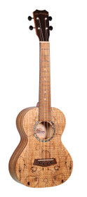 ISLANDER Traditional tenor ukulele with spalted maple top