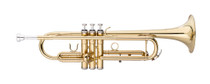 STAGG Bb Trumpet, ML-bore, Brass body material