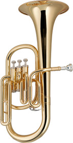 STAGG Eb Alto Horn w/3 valves, w/ABS case