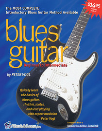 Beginning Blues Guitar Primer Book w CD Instruction Music Lesson Watch and Learn