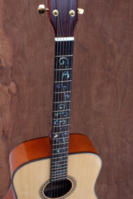 Acoustic Guitar Solid Spruce top Dreadnought vine inlay in fretboard