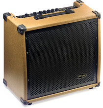 STAGG 60W(RMS)Acoustic Guitar Amplifier w/Spring Reverb