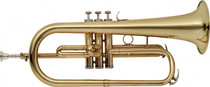 Stagg Bb Flugelhorn W/Abs Case Gold Lacquer W 3Rd Slide Ring Ws-Fh215