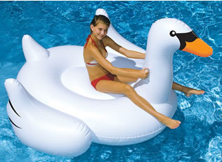 nt268-swan-pool-ride-on.jpg