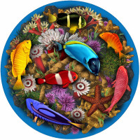 Large Coral Reef