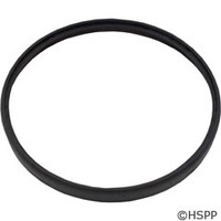 Hayward Pool Products Aquabug Ring - AXV458