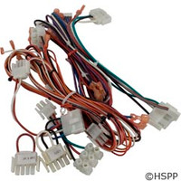 Hayward Pool Products Wiring Harness Kit Complete-Fd - FDXLWHA1930