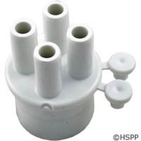 "Waterway Plastics Manifold, 1"" Spg X (4) 3/8"" Barbs (2) Plugs - 672-4030"