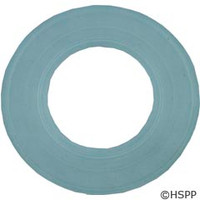 Pentair Pool Products Gasket Aqua Luminator - 79116800
