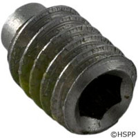 "Pentair Pool Products Screw .25""-20X3/8""Ss Set - 354256"