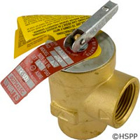 """Pentair Pool Products Valve Relief, 3/4"""" - 072138"""