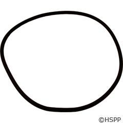 Pentair/Sta-Rite O-Ring, Seal Plate, Dyna-Glas/Dyna-Max (O-469) - U9-373