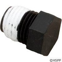 "Pentair/Sta-Rite Pipe Plug 1/4"" - WC78-40T"