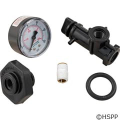 Pentair/Sta-Rite Valve & Gauge Assembly - 24850-0105