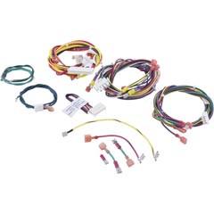 Raypak Wire/Harness - 010347F