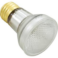 Light Bulb, R20, Flood Lamp, 100W, 120V - R20FL100/S