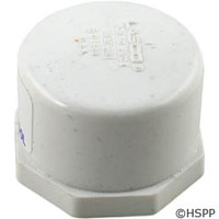 "Waterco USA Winterdrain Cap - 1"" - 88B3043"