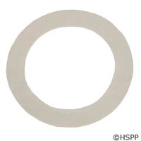 "Waterway Plastics Gasket,2"",Coupling,Clearwater - 711-4010"