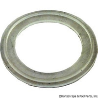 "Waterway Plastics O-Ring/Gasket Mo-Flo 2"" - 711-5120"