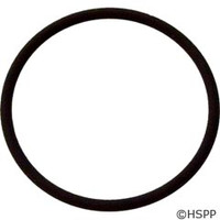 Waterway Plastics Lid O-Ring - 805-0340V