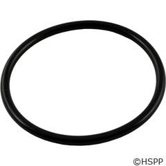 Waterway Plastics O-Ring (2 Required) (O-653) - 805-0339