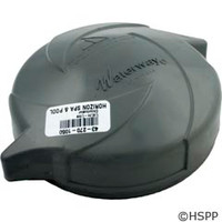Waterway Plastics Lid,In-Line Chlorinator - 519-1167