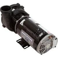 "Waterway Plastics Ww Exec 48 Frame 2"" Pump Complete,2Hp,230V,2-Spd (Oem) - 3420820-1A"