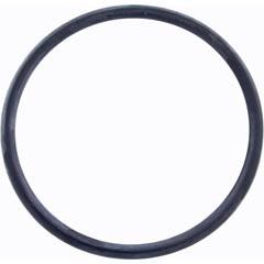 Zodiac Pool Systems Main O-Ring - R0511600