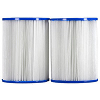 Pleatco  Filter Cartridge - Dynamic Series IV, Model DSF, DFML-25C, Waterway  -  PRB25SF-PAIR