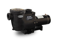 Reliant Pool Pumps For Inground Pools