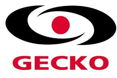 gecko spa parts